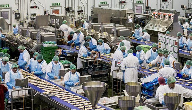 مصنع اغذية