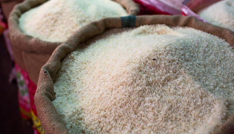 أرز - شعبة الحاصلات الزراعية
