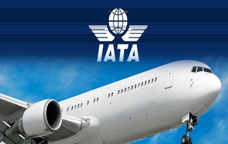 الاتحاد الدولي للنقل الجوي - إياتا